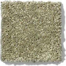 Shaw Floors SFA Vivid Colors II Sweet Grass 00300_0C161