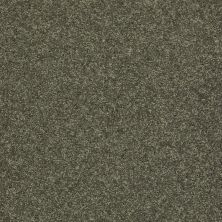 Shaw Floors SFA Vivid Colors II Olive Yard 00301_0C161