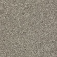 Shaw Floors SFA Vivid Colors II Grey Flannel 00503_0C161