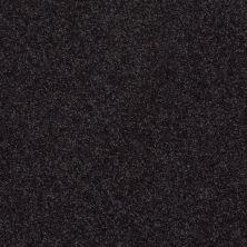 Shaw Floors SFA Vivid Colors II Meteorite 00506_0C161