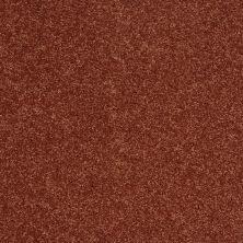 Shaw Floors SFA Vivid Colors II Earthen Ware 00603_0C161