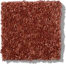 Shaw Floors SFA Vivid Colors II Earthen Ware 00603_0C161
