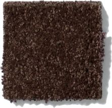 Shaw Floors SFA Vivid Colors II Dark Chocolate 00706_0C161
