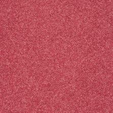 Shaw Floors SFA Vivid Colors II Love Spell 00800_0C161