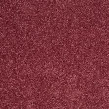 Shaw Floors SFA Vivid Colors II Berry Kiss 00801_0C161