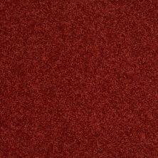 Shaw Floors SFA Vivid Colors II Ravishing Red 00802_0C161