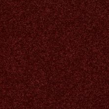 Shaw Floors SFA Vivid Colors II Moroccan Jewel 00803_0C161