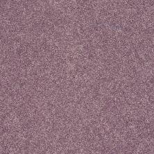 Shaw Floors SFA Vivid Colors II Lavender Scent 00900_0C161
