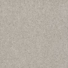 Shaw Floors SFA Vivid Colors III Mushroom Cap 00106_0C162