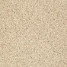 Shaw Floors SFA Vivid Colors III Warm Vanilla 00107_0C162