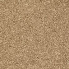 Shaw Floors SFA Vivid Colors III Rattan 00202_0C162
