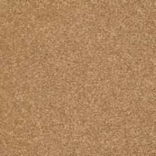 Shaw Floors SFA Vivid Colors III Honey 00203_0C162