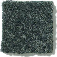 Shaw Floors SFA Vivid Colors III Emerald Coast 00302_0C162