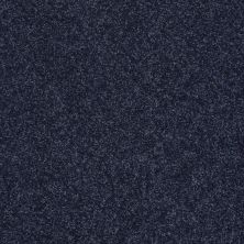 Shaw Floors SFA Vivid Colors III New Navy 00403_0C162