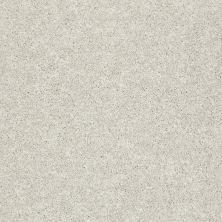 Shaw Floors SFA Vivid Colors III Light Fog 00500_0C162