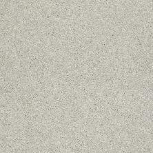 Shaw Floors SFA Vivid Colors III Chrome 00501_0C162