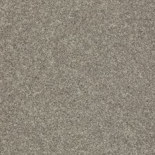 Shaw Floors SFA Vivid Colors III Grey Flannel 00503_0C162