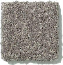 Shaw Floors SFA Vivid Colors III Grey Flannel 00503_0C162