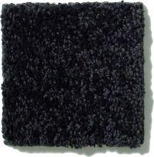 Shaw Floors SFA Vivid Colors III Meteorite 00506_0C162