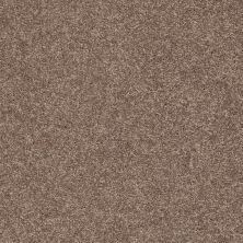Shaw Floors SFA Vivid Colors III River Bank 00701_0C162