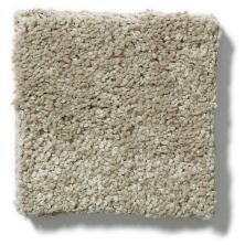 Shaw Floors SFA Vivid Colors III Sand Swept 00703_0C162