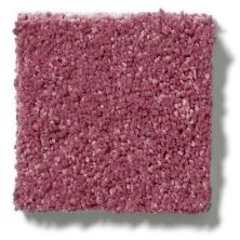 Shaw Floors SFA Vivid Colors III Berry Kiss 00801_0C162