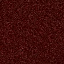 Shaw Floors SFA Vivid Colors III Moroccan Jewel 00803_0C162