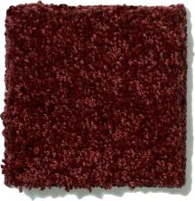 Shaw Floors SFA Vivid Colors III Moroccan Jewel 00803_0C162
