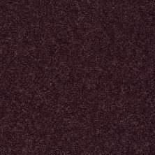 Shaw Floors SFA Vivid Colors III Grape Wine 00901_0C162