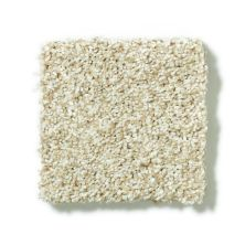 Shaw Floors SFA Pristine Texture 00110_0C163