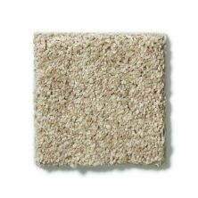 Shaw Floors SFA Cashmere Texture 00113_0C163