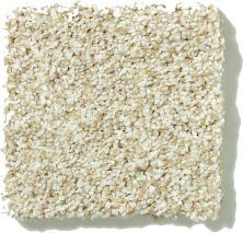 Shaw Floors SFA Pristine Texture 00110_0C164