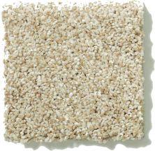 Shaw Floors SFA Sand Texture 00111_0C164