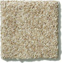 Shaw Floors SFA Cashmere Texture 00113_0C164