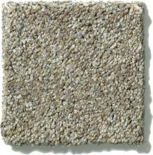 Shaw Floors SFA Stone Texture 00510_0C164