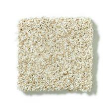 Shaw Floors SFA Pristine Texture 00110_0C165