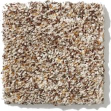 Shaw Floors SFA Organic Texture 00141_0C169