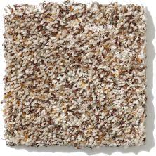 Shaw Floors SFA Organic Texture 00141_0C170