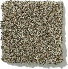 Shaw Floors SFA Griffin Texture 00570_0C174