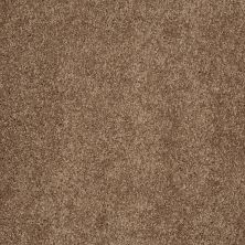 Shaw Floors SFA Laugh With Me (s) Pecan Praline 00242_0C192
