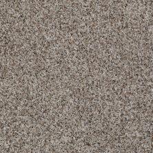 Shaw Floors SFA Belong With Me Deer Field 00702_0C197