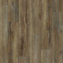 Shaw Floors Reality Homes Dungeness Modeled Oak 00709_100RH