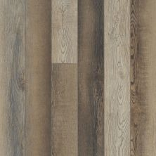 Shaw Floors Resilient Residential Paragon 5″ Plus Brush Oak 07033_1019V