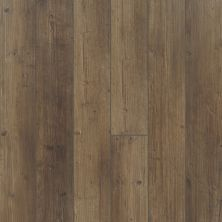 Shaw Floors Resilient Residential Paragon 5″ Plus Tactile Pine 07038_1019V