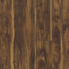 Shaw Floors Vinyl Residential Paragon 7″ Plus Rainforest Acacia 00696_1020V