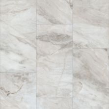 Shaw Floors Resilient Residential Paragon Tile Plus Catalina 01109_1022V