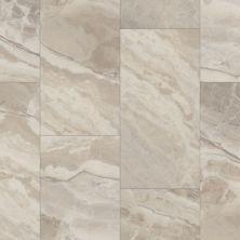Shaw Floors Resilient Residential Paragon Tile Plus Gypsum 06015_1022V