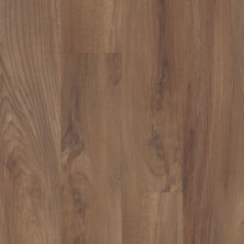 Shaw Floors Reality Homes Rialto Beach Ginger Oak 00802_102RH