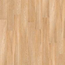 Shaw Floors Exclusive Pacific Coast20 Paris 00343_1030V