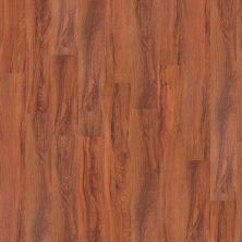 Shaw Floors Exclusive Pacific Coast20 St. Louis 00618_1030V